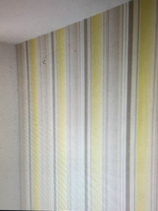Behang 4